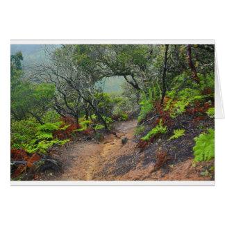 San Pedro Valley, CA Card