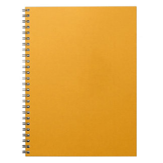 SAND AND BEACH SOLID SUMMER CREAMSICLE ORANGE BACK NOTE BOOKS
