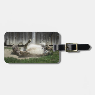 Sand Bathing Donkey Luggage Tag