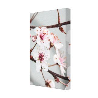 Sand Cherry Blossom Canvas Print