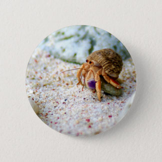 Sand Crab, Curacao, Caribbean islands, Photo 6 Cm Round Badge