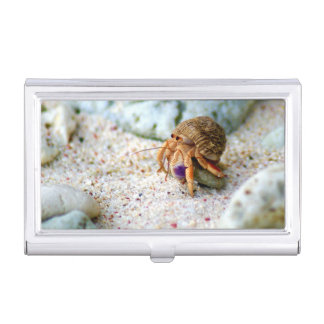 Sand Crab, Curacao, Caribbean islands, Photo Case For Business Cards