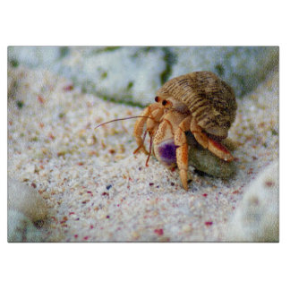 Sand Crab, Curacao, Caribbean islands, Photo Cutting Board