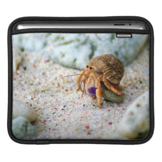 Sand Crab, Curacao, Caribbean islands, Photo iPad Sleeve