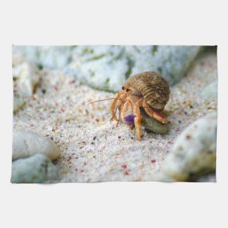 Sand Crab, Curacao, Caribbean islands, Photo Tea Towel