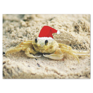 Sand Crab in Santa Hat Christmas Tissue Paper