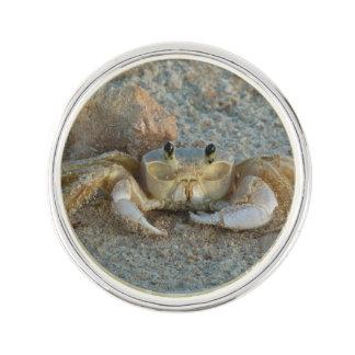 Sand Crab Lapel Pin