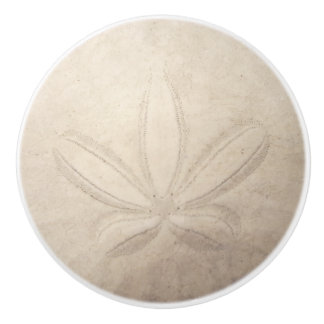 Sand Dollar Ceramic Pull