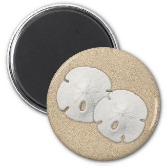Sand Dollar Magnet