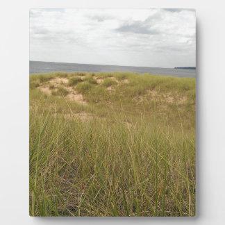 Sand dune plaque