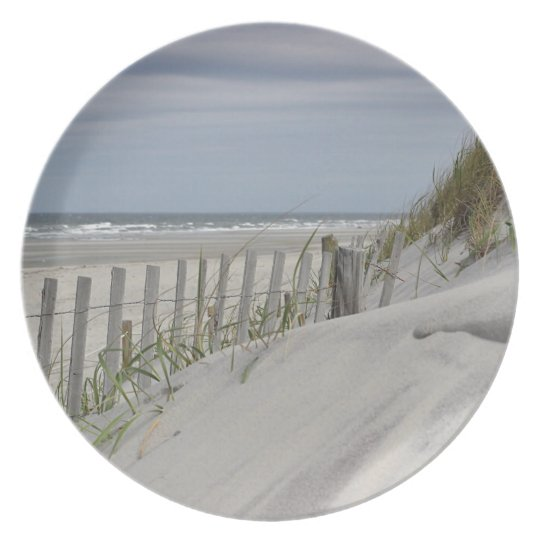 Sand Dunes and Beach Fence Plate