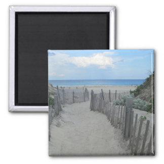 Sand Dunes Block Island Fridge Magnets