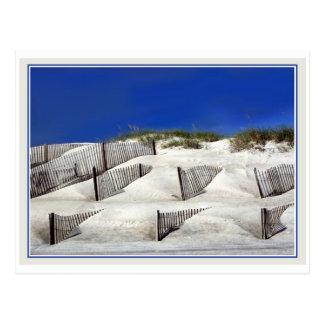 Sand Fences Postcards