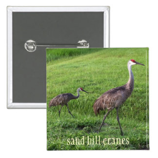 Sand Hill Cranes Rectangle Button