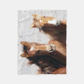Sand Wash Basin Foals Fleece Blanket