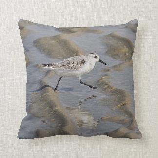 Sanderling Cushion