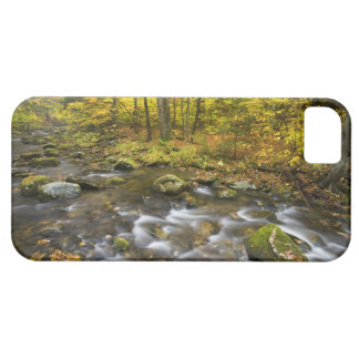 Sanderson Brook.  Chester-Blanford State Forest. iPhone 5 Case