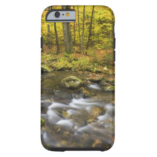 Sanderson Brook.  Chester-Blanford State Forest. Tough iPhone 6 Case