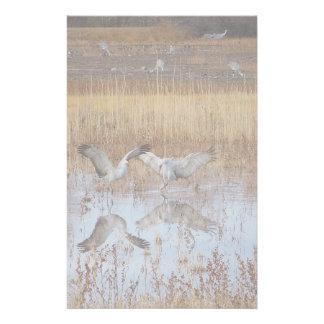 Sandhill Crane Birds Wildlife Animals Custom Stationery