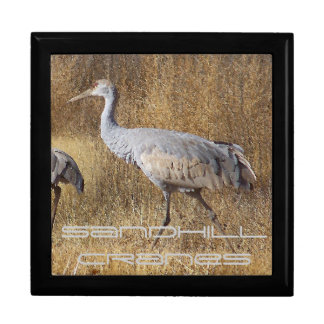 Sandhill Crane Birds Wildlife Animals Large Square Gift Box