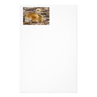 Sandhill Crane Chick Personalized Stationery