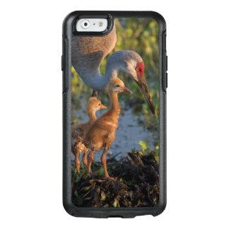 Sandhill crane with chicks, Florida OtterBox iPhone 6/6s Case