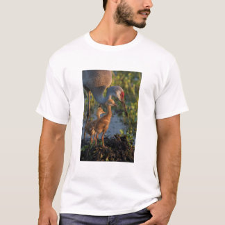 Sandhill crane with chicks, Florida T-Shirt
