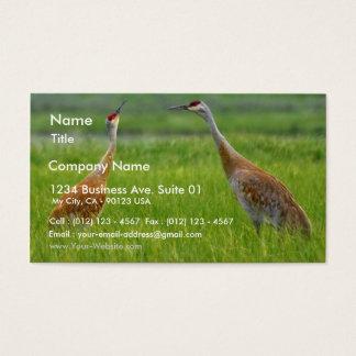 Sandhill Cranes Business Card