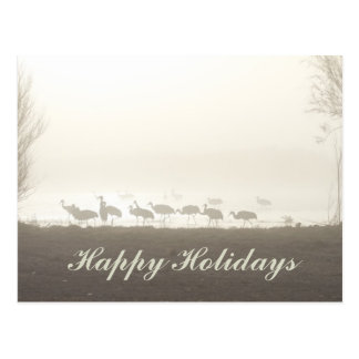 Sandhill Cranes in the Mist Happy Holidays Postcard