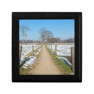 Sandpath between snowy meadows in dutch winter gift box