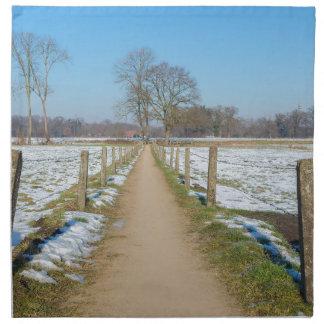 Sandpath between snowy meadows in dutch winter napkin