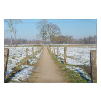 Sandpath between snowy meadows in dutch winter placemat