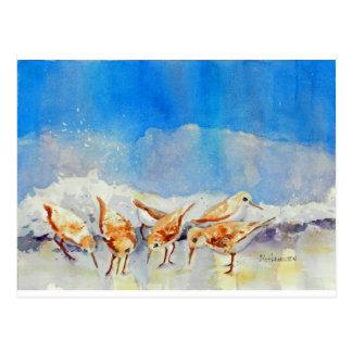 Sandpipers, Beach, Waves, Ocean, Watercolor Postcard