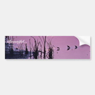 Sandpipers in the sunset bumper stickers