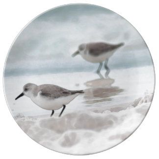 Sandpipers on beach porcelain plates