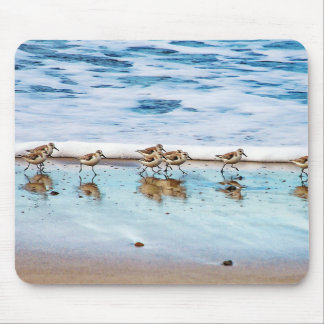 Sandpipers Running Along The Beach Mouse Pad