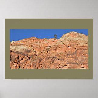 Sandstone Cliff Zion National Park Poster