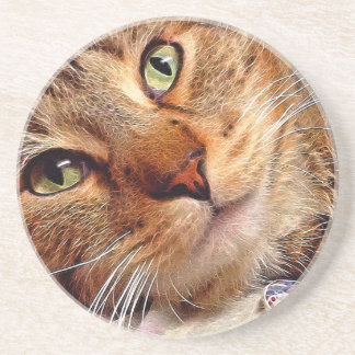 "Sandstone Coaster - ""Blue Eyed Kitty"" by SnapDaddy"