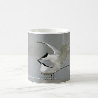 Sandwich Terns on Texas Coast Coffee Mug