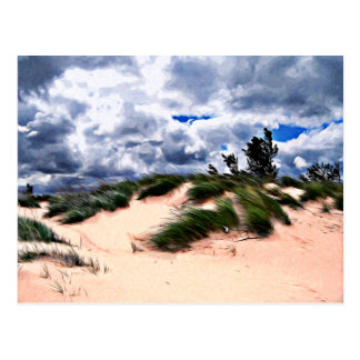 Sandy Beach Dune Grass Postcard