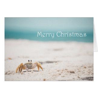 Sandy Crab Christmas Card