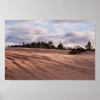 Sandy Landscape Poster