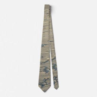 Sandy Seashell Tie