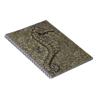 Sandy Textured Seahorse Photograph Spiral Notebooks