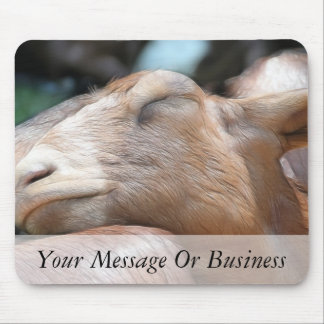 Sandy The Goat - Nap Time! Mouse Pad