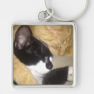 Sandybean and Foofy snuggling for nap time Key Ring