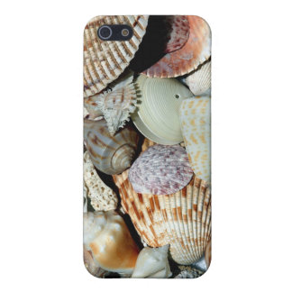 Sanibel Island Beach Shells Case For iPhone 5/5S