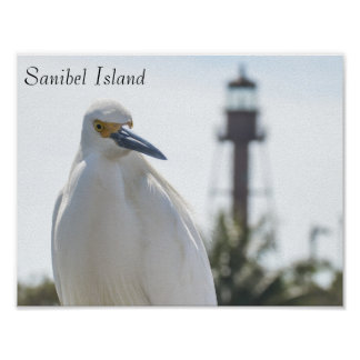 Sanibel Island Lighthouse and Bird poster