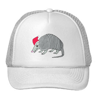 Santa Armadillo Mesh Hats