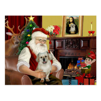 Santa At Home - Tibetan Spaniel 1 - Santa Postcard